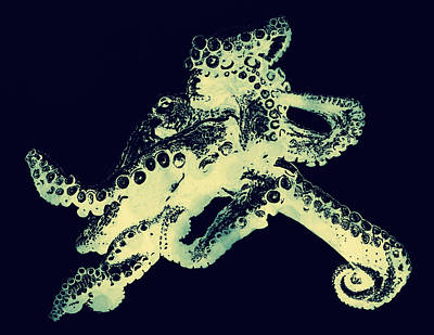 Octopus Iconic Art Print