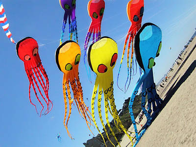 Photograph - Octopus Kites by Wendy McKennon