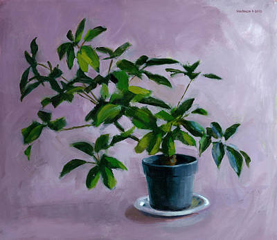 Potted Plant Painting - Octopus Plant by Douglas Simonson