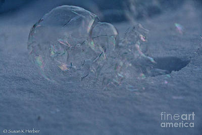 Photograph - Odd Ice by Susan Herber