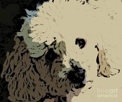 Jsm Fine Arts Halifax Digital Art - Oddles Of  Poodle by John Malone