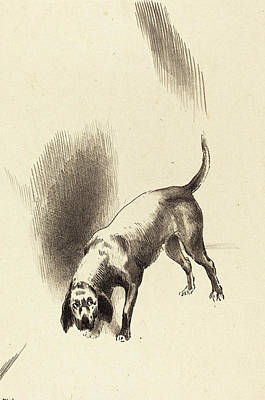 1916 Drawing - Odilon Redon French, 1840 - 1916, The Dog by Quint Lox