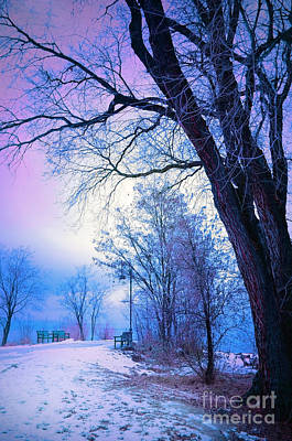 Okanagan Lake Photograph - Of Dreams And Winter by Tara Turner