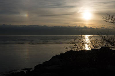 Phantom Dog Photograph - Of Sun Dogs And Rainbows by Georgia Mizuleva