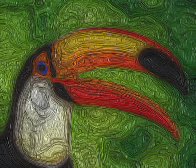 Toucan Digital Art - Of The Tropics by Jack Zulli