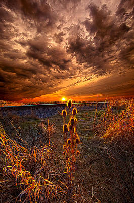 Photograph - Of Wonders Lost by Phil Koch