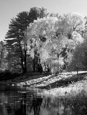 Concord Ma Photograph - Off The Beaten Path by Luke Moore