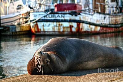 Photograph - Off The Docks by Deena Otterstetter