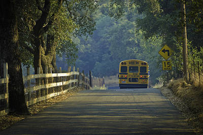 Photograph - Off To School by Sherri Meyer