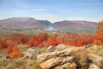 Photograph - Ogden Valley Fall by Bill Singleton