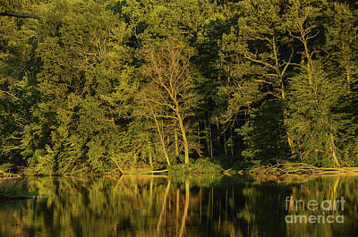Photograph - Ogle Lake Reflections 1 by Mary Carol Story