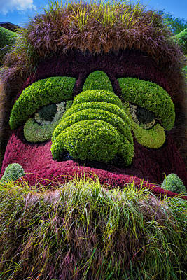 Mosaic Photograph - Ogre by Joan Carroll
