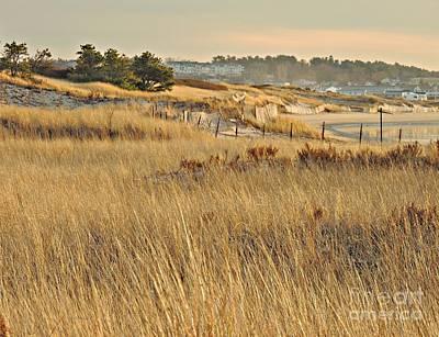 Photograph - Ogunquit Beach II by Marcia Lee Jones
