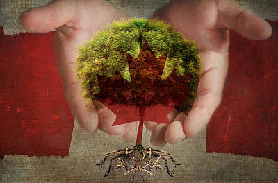 Oh Canada  Art Print