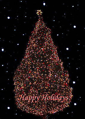 Photograph - Oh Christmas Tree by Deb Buchanan