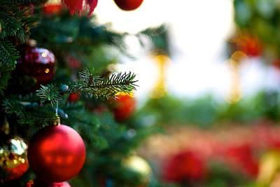 Oh Christmas Tree Art Print by JM Photography