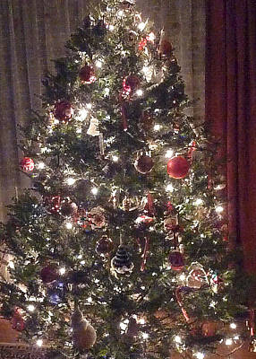 Photograph - Oh Christmas Tree by Margie Avellino