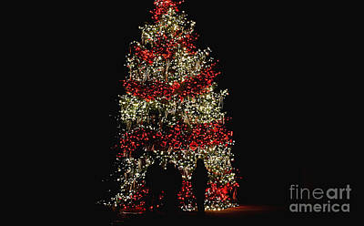 Photograph - Oh Christmas Tree Oh Christmas Tree by Living Color Photography Lorraine Lynch