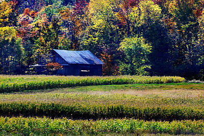 Photograph - Ohio Cabin by Kathleen Stephens