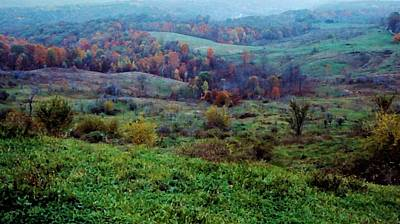 Photograph - Ohio Countryside by Diane Alexander