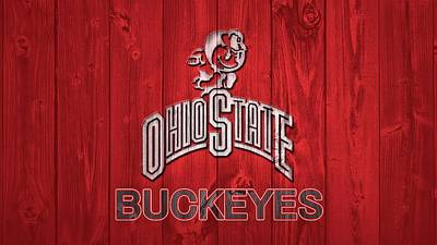 Mixed Media - Ohio State Buckeyes Barn Door by Dan Sproul