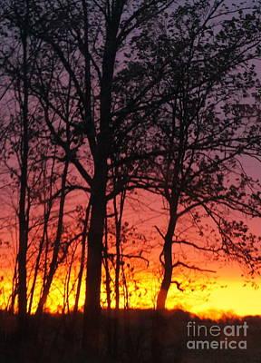 Photograph - Ohio Sunset 2 by Rachel Munoz Striggow