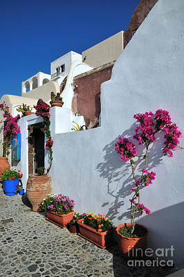 Photograph - Oia Town by George Atsametakis