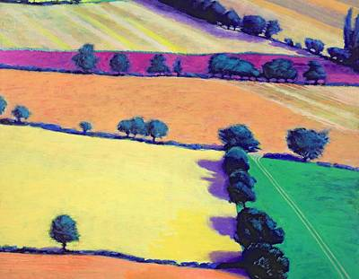 Violet Photograph - Oil by Paul Powis