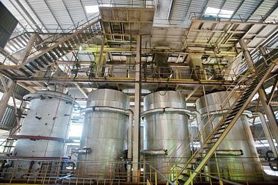 Oil Palm Processing Factory Art Print by Scubazoo/science Photo Library