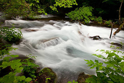 Photograph - Oirase Stream by Brad Brizek