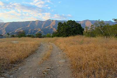 Photograph - Ojai Mountains by Liz Vernand