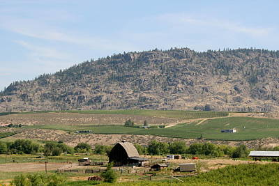 Photograph - Okanagan Valley by Betty-Anne McDonald
