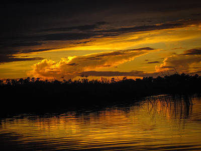 Photograph - Okavango Sunset 2 by Gregory Daley  PPSA
