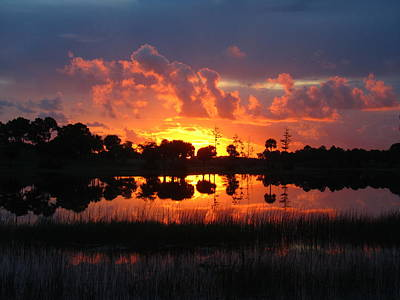 Photograph - Okeeheelee Sunrise by Karen Lindquist