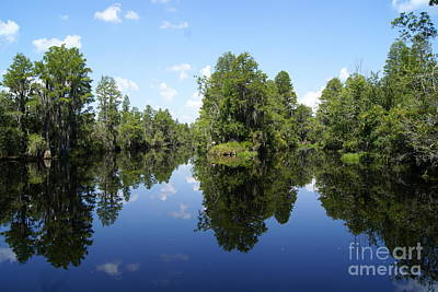 Food And Flowers Still Life - Okefenokee Swamp by Evelyn Hill
