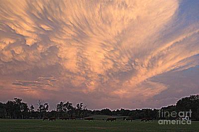 Photograph - Oklahoma Sky by Anjanette Douglas