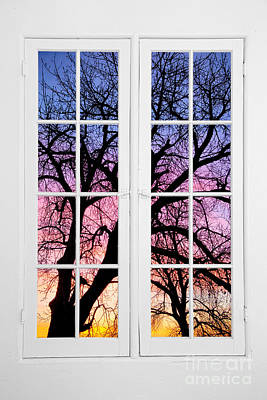 Old 16 Pane White Window Colorful Sunset Tree View  Original