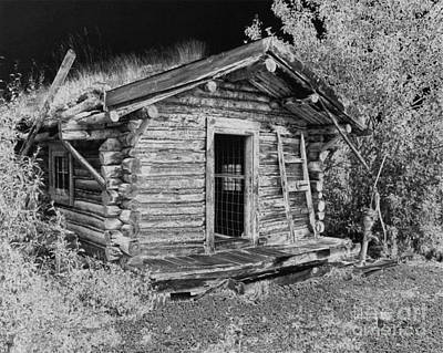 Drawing - Old Abandoned Cabin by Tlynn Brentnall