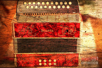 Listening Digital Art - Old Accordion - Music - Woodgrain by Barbara Griffin