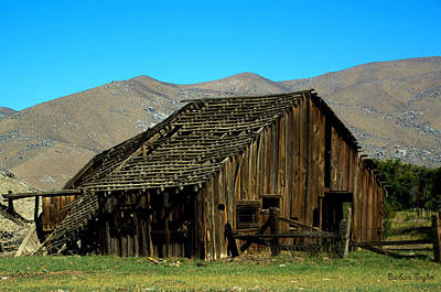 Old And Forgotten Rustic Barn Art Print