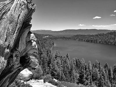 Old And New Of Cascade Lake B And W Art Print