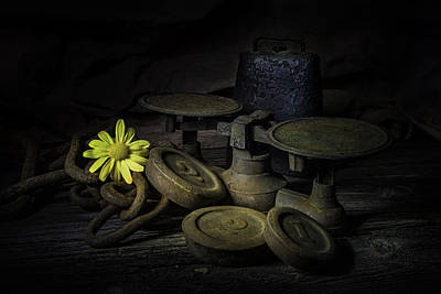 Light Paint Photograph - Old And Rusted Still Life by Tom Mc Nemar