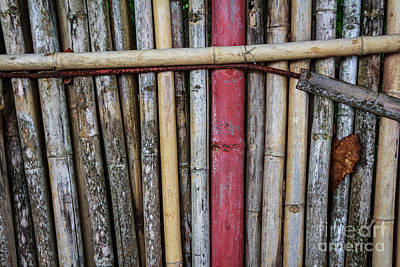 Old Bamboo Fence Art Print by Niphon Chanthana