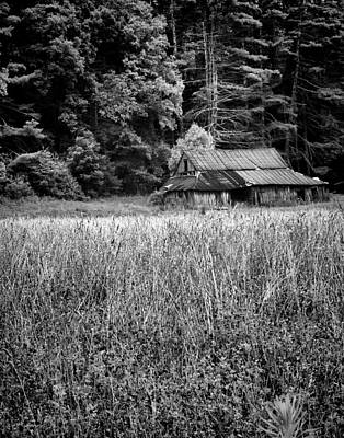 Photograph - Old Barn 02 by Gordon Engebretson