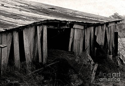 Photograph - Old Barn 1 by Tom Brickhouse