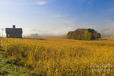 Photograph - Old Barn And A Field Of Corn On An Autumn Morning. by Don Landwehrle