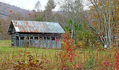 Photograph - Old Barn And Bird House by Duane McCullough