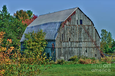 Photograph - Old Barn by Bianca Nadeau