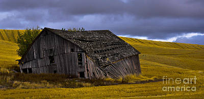 Old Barn Art Print by Camille Lyver