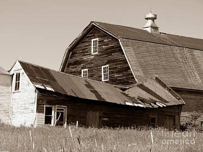 Soap Suds - Old Barn by Christine Stack